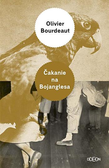 Čakanie na Bojanglesa Obálka knihy